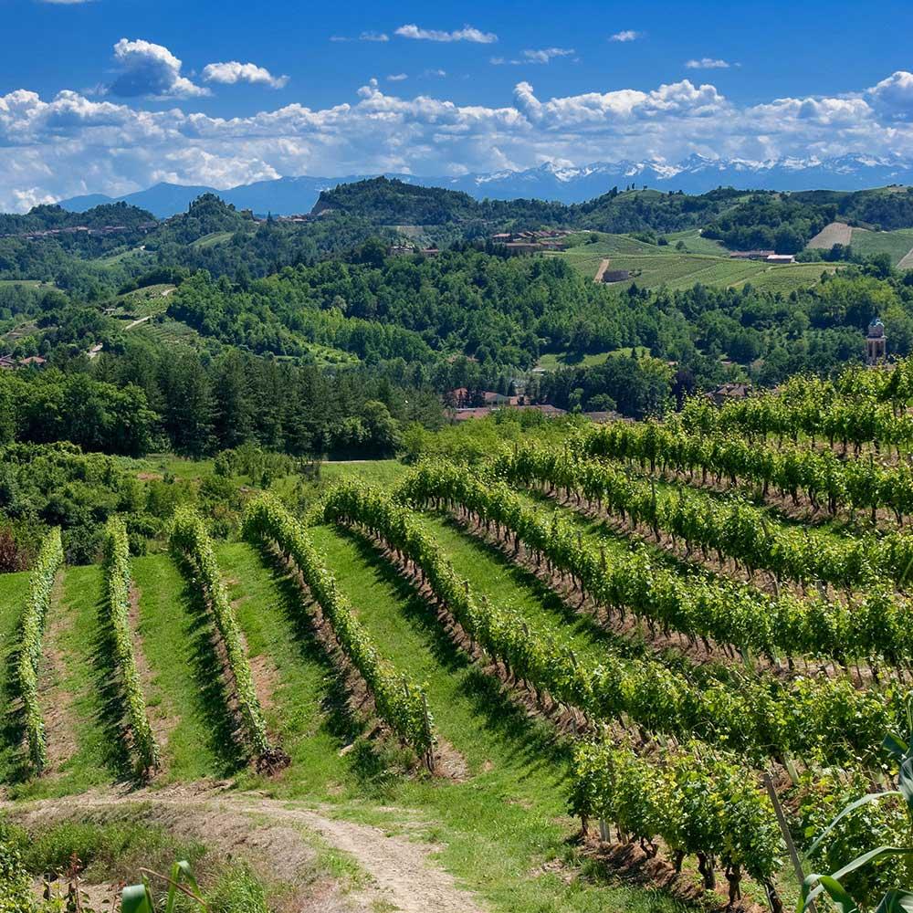 Paesaggio del Roero, Piemonte